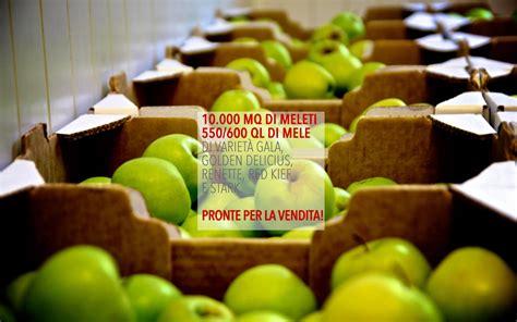 Www Il Gabbiano It - cooperativa sociale quot il gabbiano quot le mele