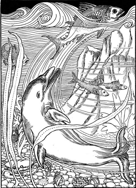 Coloring For Adults by Coloring Pages For Adults Dolphins Coloring Home