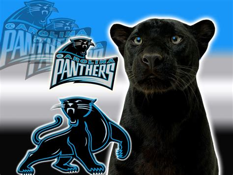 black panthers phone number carolina panthers logo 1 7ne6igzun0 1024x768 photo