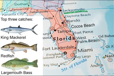florida fish fishing jacksonville map species places destin water three catch there