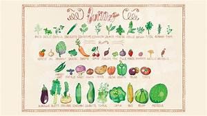 Calendrier Fruits Et Légumes De Saison : l 39 l f n fruits et l gumes de saison en juillet ~ Nature-et-papiers.com Idées de Décoration