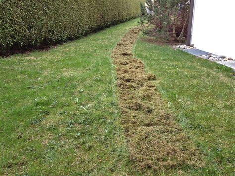 Rasen Vertikutieren Sommer by Ist Ihr Rasen Bereit F 252 R Den Sommer