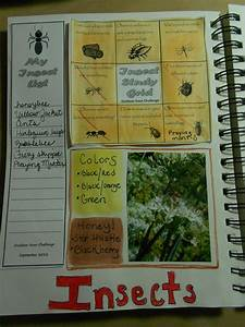 Nature Journal With A Photo