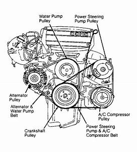 1992 Ford Tempo Serpentine Belt Routing And Timing Belt Diagrams