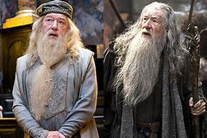10 Reasons Dumbledore And Gandalf Would Be A Terrible Couple