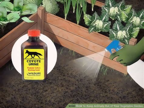 Keep Animals Out Of Garden by 3 Ways To Keep Animals Out Of Your Vegetable Garden Wikihow