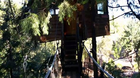 One Tree Treehouse Youtube