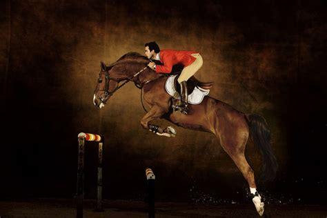 chaise selle de cheval selle français stallion hors la loi ii hemisgalerie