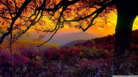 Colourful Autumn Wallpaper by Autumn Dusk Wallpaper 1920x1080 Wallpoper 448869