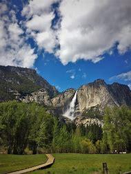 Yosemite Valley Floor Tram Tour