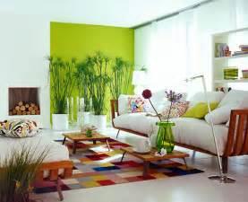 pflanzen wohnzimmer pflanzen richtig in szene gesetzt