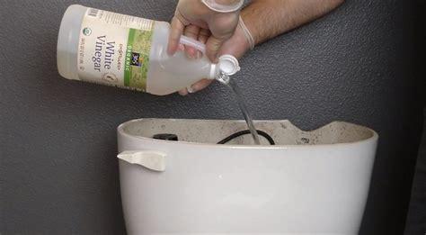 pours vinegar   toilet tank  flushes