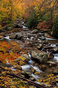 Little River Road Smoky Mountains