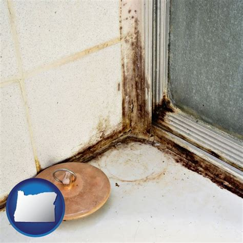 mold mildew prevention inspection removal  oregon