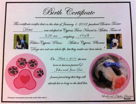 dog birth certificates cypress farm kennel puppy care kits