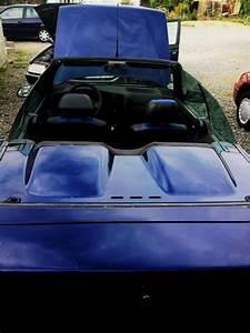 Carte Grise Déchirée : troc echange renault 19 cabriolet 16s karman ph2 sur france ~ Maxctalentgroup.com Avis de Voitures