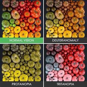 Monochromatisme : définition de MONOCHROMATISME , , subst. masc.