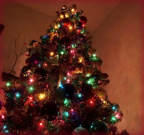 mixing white and colored lights on tree images of colored christmas tree lights home design ideas