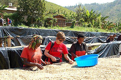 Gasharu also partners with three farm cooperatives from the region with a membership of 1,650 local farmers. Rwanda Coffee Farming Program Highlights Land Trust Dinner ...
