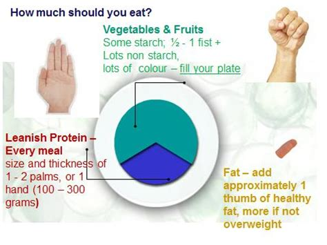 Portion Template by Weight Loss On The Paleo Diet A Guide To Portion