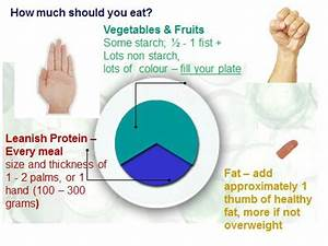 weight loss on the paleo diet a guide to portion control With portion control template