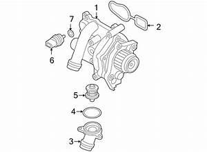 1997 Vw Jetta Engine Diagram Water : 2009 volkswagen jetta gli engine water pump assembly ~ A.2002-acura-tl-radio.info Haus und Dekorationen