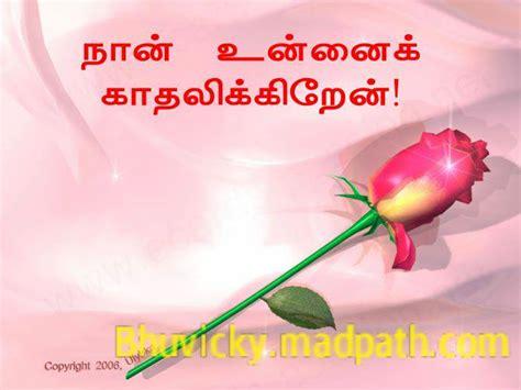 rose images  love messages  tamil impremedianet