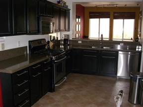 Black Kitchen Cabinets with Hardware