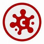 Icon Coronavirus Symbol Icons Svg