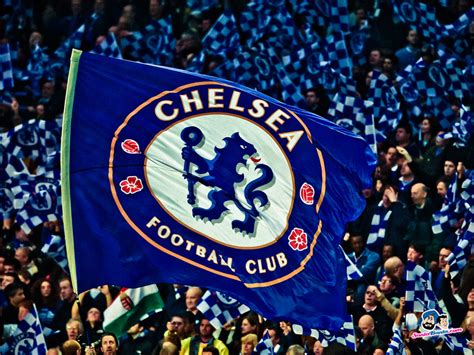 Download popular wallpapers 5 stars: ChelseA F.C.2013- 5 Stars