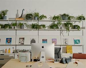 You Can Pay People To Style Your Houseplants