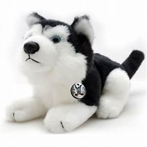 Kuscheltier Mit Großen Augen : husky idaho schlittenhund liegend schwarz wei mit blauen augen kuscheltier 22 cm ~ Watch28wear.com Haus und Dekorationen