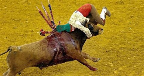 STOP! Children being exposed to bullfight violence - By ...