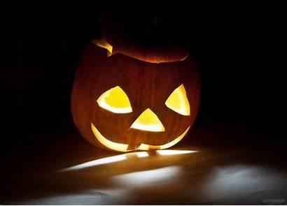 Halloween Horror Blood Dark Spooky Creepy Holiday