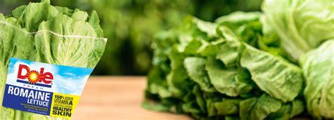 Romaine Lettuce | Dole.com