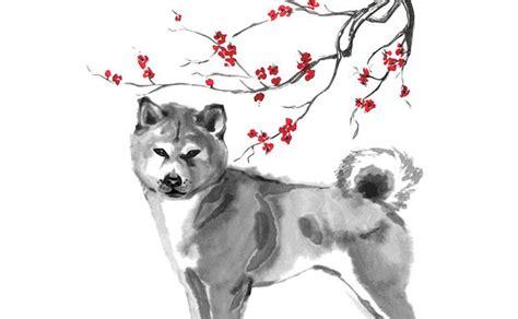 2018 Jahr Des Hundes Farben by China Horoskop 2018 Das Jahr Des Hundes At