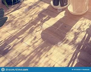 Wooden, Floor, Texture, Tree, Branches, Sahdow, Home, Garden, Outdoor, Background, Stock, Image