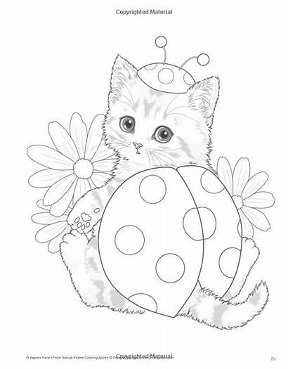 Coloring Pages Teacup Kitten Colouring Kittens Cat
