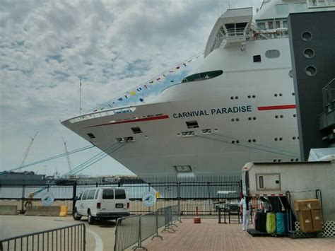 45 Best Images About Carnival Paradise Cruise On Pinterest