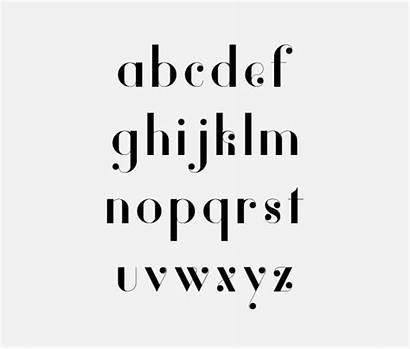 Modern Vanity Font Fonts Script Type Serif