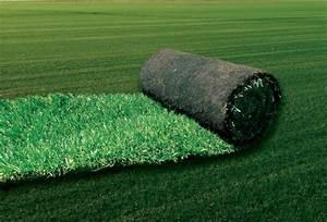 Engrais Gazon Naturel : gazon naturel en plaque jardinerie berre l 39 etang berre ~ Premium-room.com Idées de Décoration