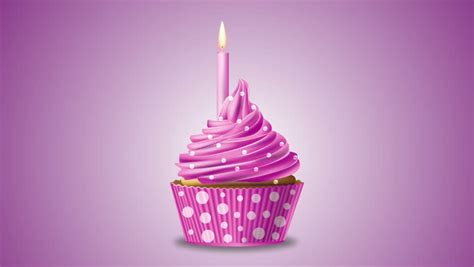 pink birthday cupcake   stock footage video
