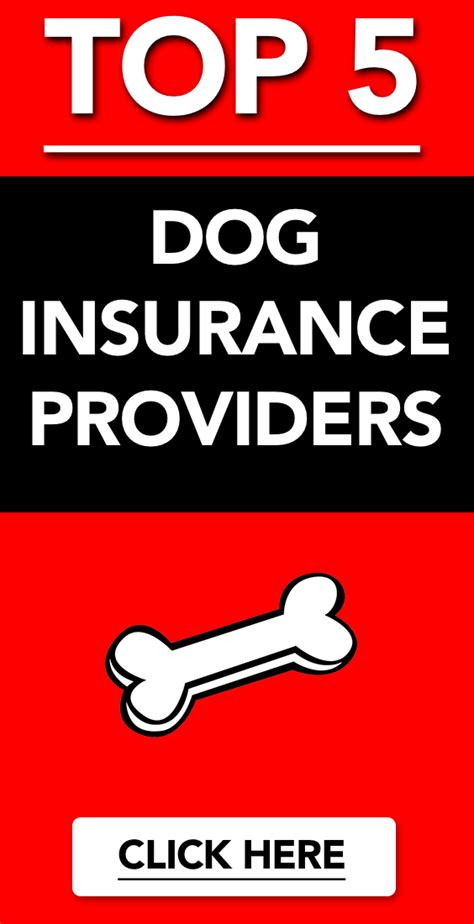 After all, if you pay for $20,000 worth of coverage and your dog develops cancer. Top 5 Dog Insurance Providers | Dog insurance, Pet insurance, Pet health insurance