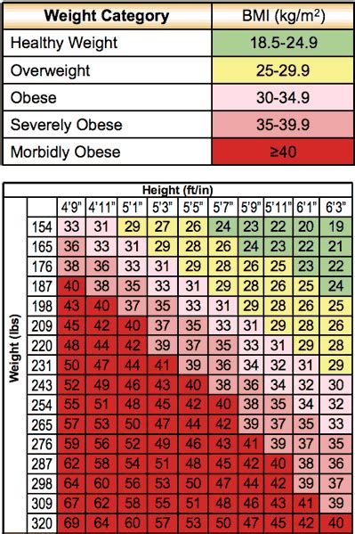 BMI Printable Weight Loss Chart
