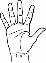Palm Coloring Hands Template Drawing Facing Handprint Drawings Clipartmag Sketch Shape sketch template