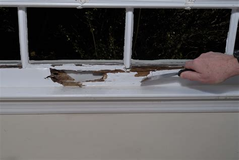Interior Window Sill Repair by Interior Window Sill Repair Top Home Information