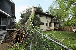 Protecting Your Home  U0026 Business From Storm Damage  5