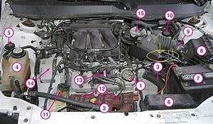New  Used  Car   Found Broken Piece Under Hood