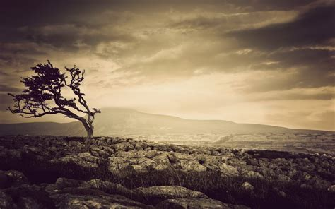 Sepia Background Sepia Wallpapers Wallpaper Cave