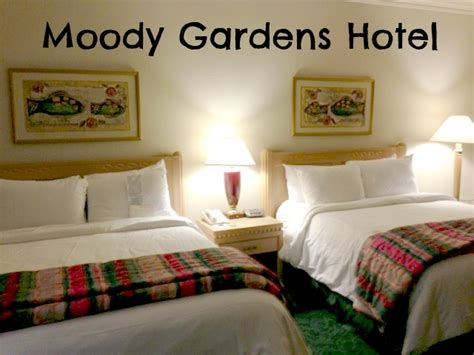 moody gardens hotel moody gardens hotel review for the whole family